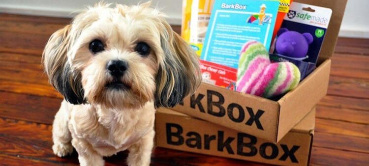 barkbox-header
